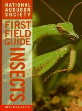 Insects (National Audubon Society's First Field Guides)