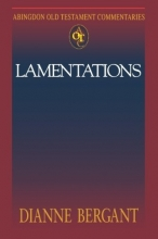 Abingdon Old Testament Commentaries: Lamentations