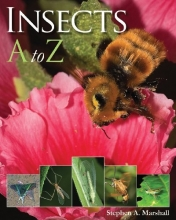 Insects A to Z (A to Z (Firefly Books))