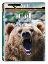 Nature: Clash: Encounters of Bears & Wolves