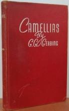 Camellias,