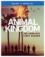 Animal Kingdom: The Complete First Season  [Blu-ray]