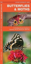 Butterflies & Moths: A Folding Pocket Guide to Familiar North American Species (A Pocket Naturalist Guide)