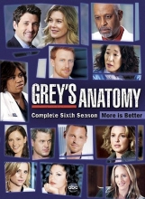 Grey's Anatomy: The Complete Sixth Season